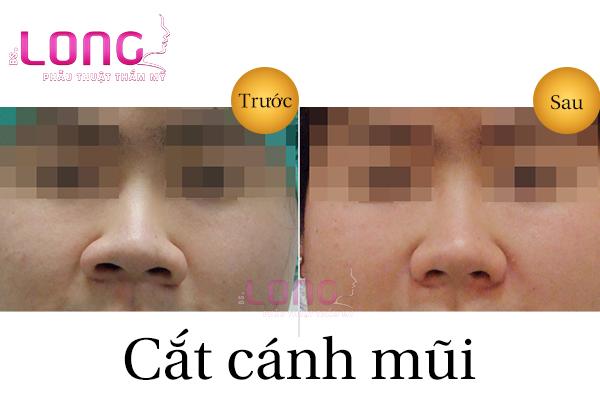 cat-canh-mui-gia-bao-nhieu-tien-va-co-dat-khong-1